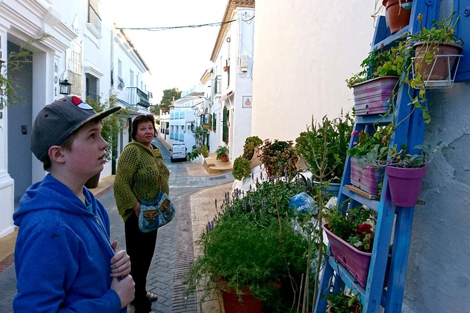 Улочки Бенальамадена, лестница с цветами
