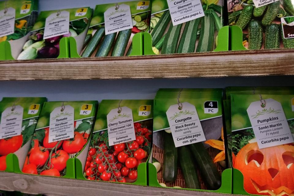 Семена, которые продаются в супермаркете. Большинство из них - гибриды