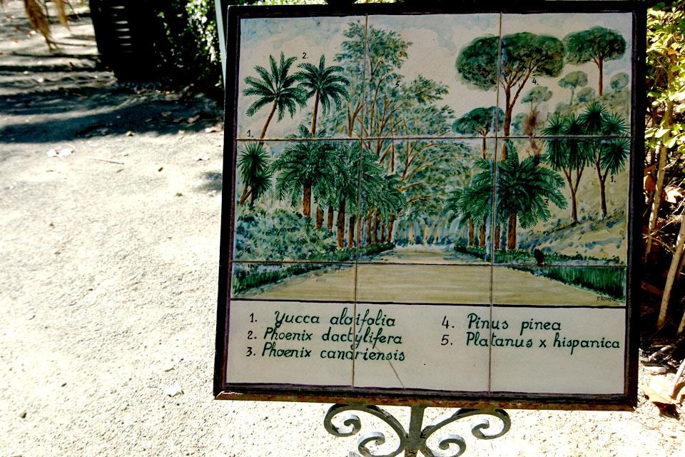 Старая табличка на глазурованных плитках , Ботанический сад Ла Консепсьон