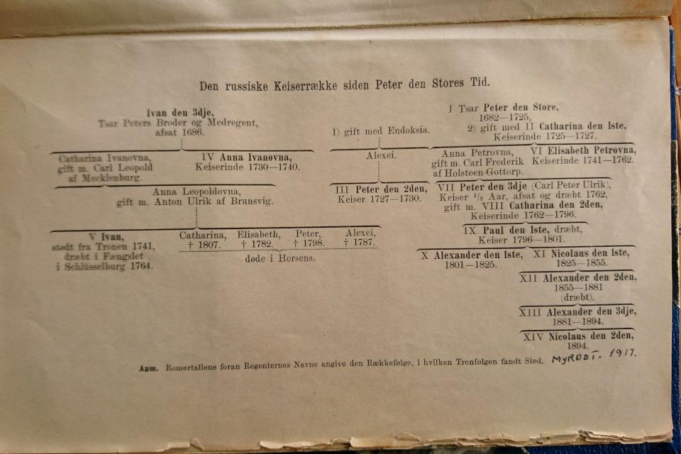 Родословная русских царей , Брауншвейгское семейство
