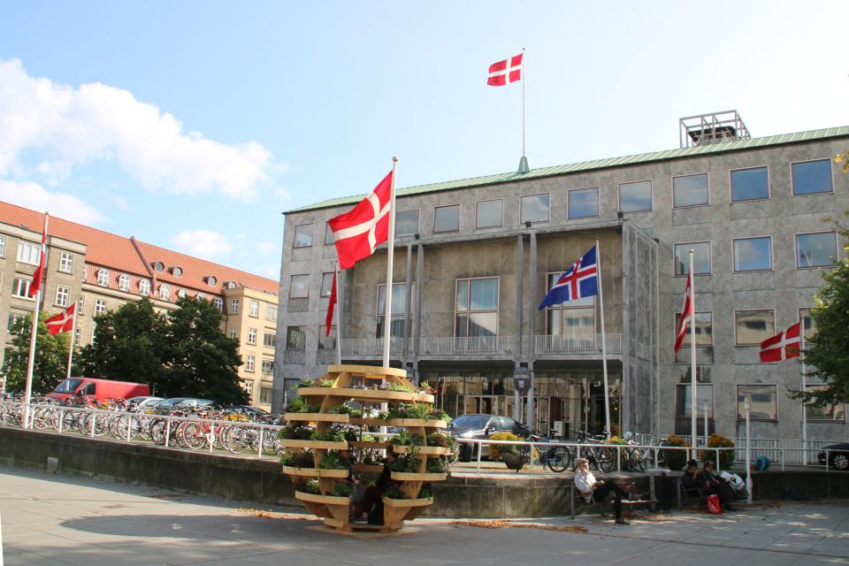 Флаг Исландии около ратуши г. Орхус