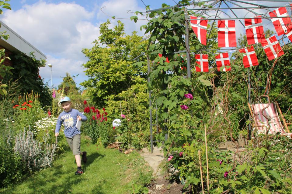Украсили сад флажками по случаю дня рождения сына в день Вальдемара 15 июня 2014 года