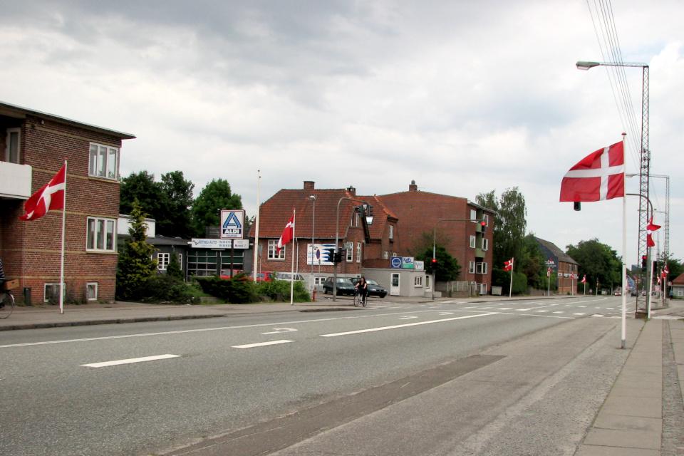 По случаю дня конституции в г. Обюхой, флаги вдоль дороги Силькеборгвай (Silkeborgvej)
