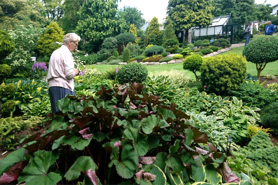 Кирстен в своем саду