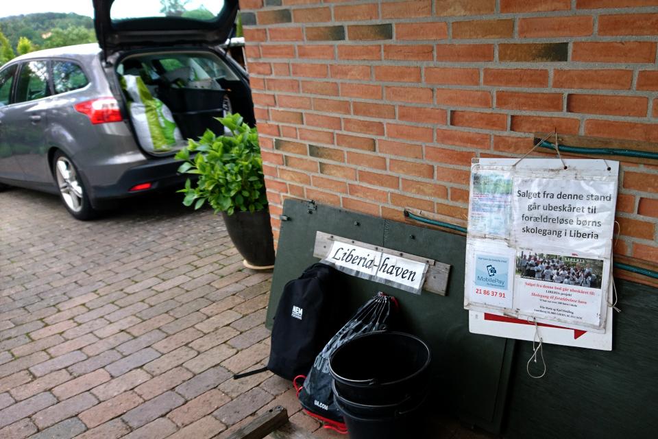 Возле дома находятся инвентарь, используемый на ярмарках по продаже растений