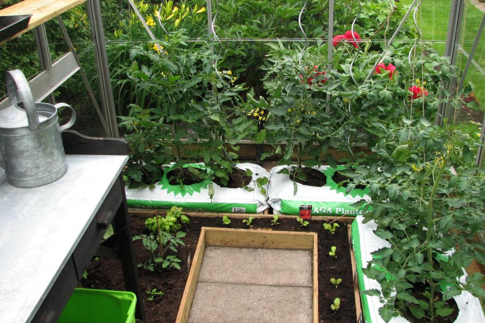 Теплица для выращивания овощей в летнее время года
