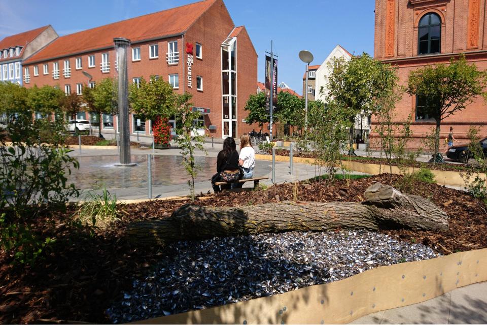 Бревно дерева и ракушки мидий на городской клумбе, Бульвар Остерпорт, г. Рандерс, Дания