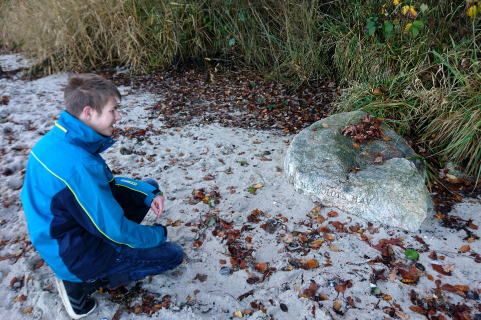 Камень под названием Море Гумбольдта (дат. Humboldts Hav)
