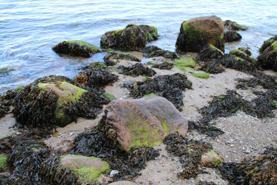 """Камень с надписью """"Море Нектара"""" (дат. Nektarhavet)"""