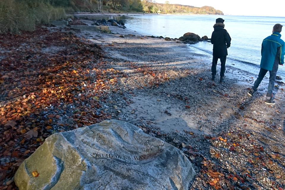 Лунный камень Море Спокойствия (дат. Stilhedens Hav)