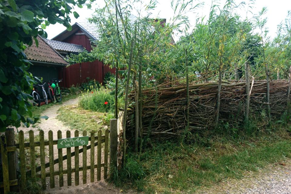 Зеленая ограда из ивы в экопоселении Фриланд / Friland, Дания
