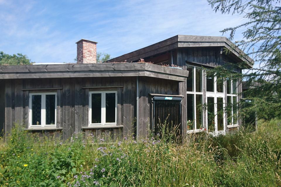 Экодом, построенный из пихты дуглас, Фриланд / Friland, Дания