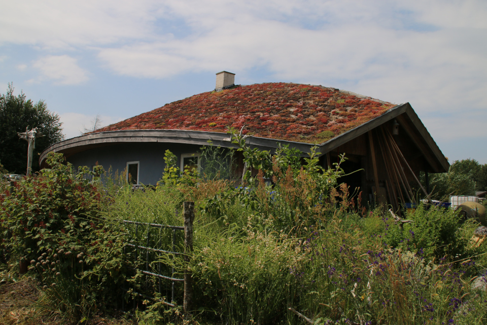 экодом с зеленой крышей, Фриланд, Дания