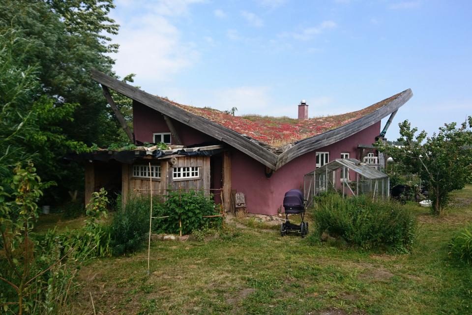 Зелёная кровля на доме, Фриланд, Дания
