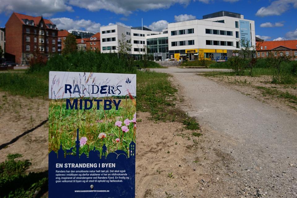 парк с прибрежной флорой Дании