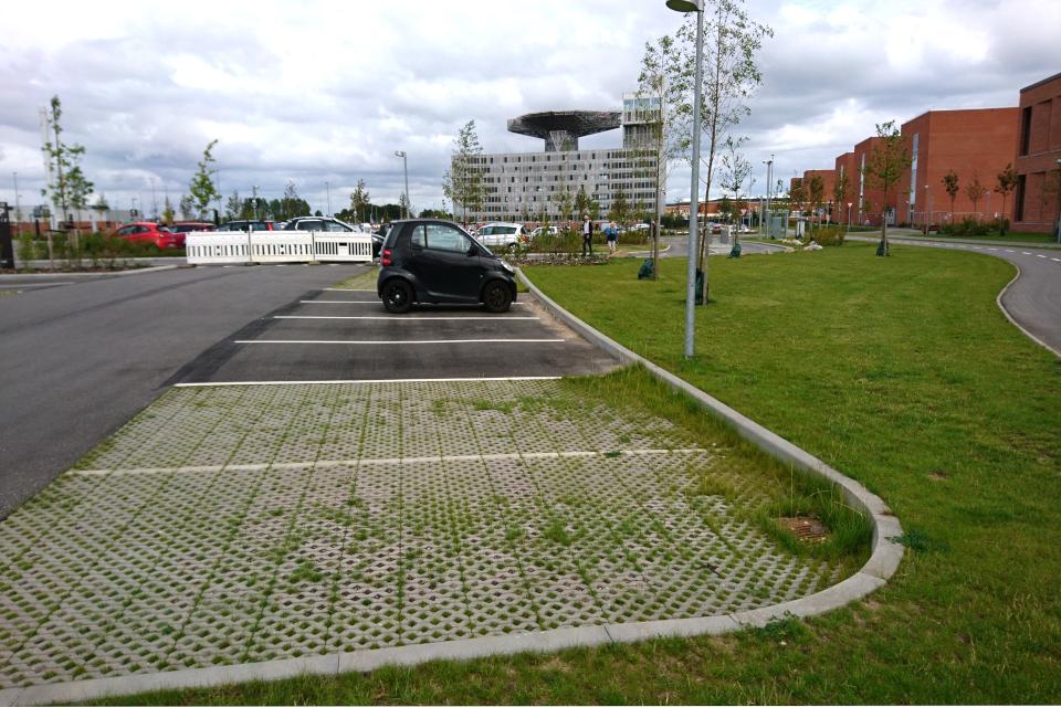 Парковочные места, покрытые плиткой с дырками для травы, Университетская больница