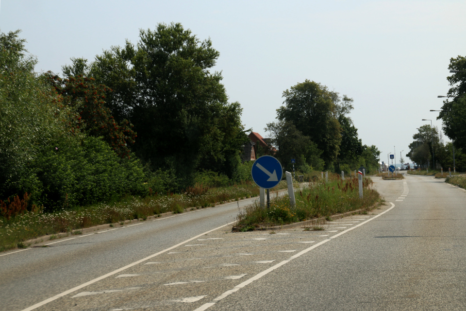 Дикая флора Дании на клумбах дороги у въезда в порт города Хоу / Hou