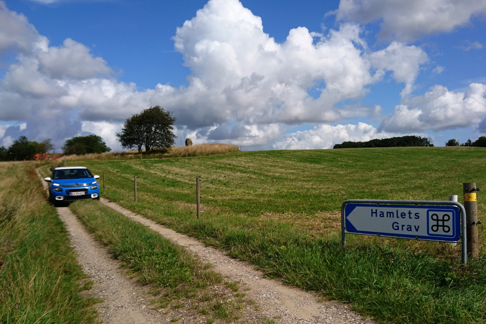Вид на курган с могилой Гамлета со стороны велосипедного маршрута Гамлет