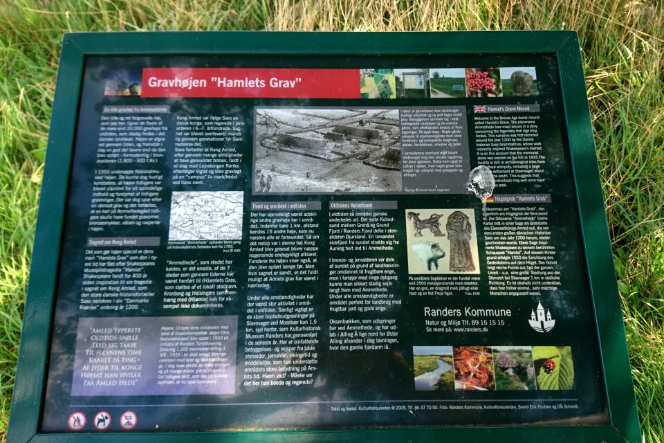 Информация на табличке возле могилы Гамлета.