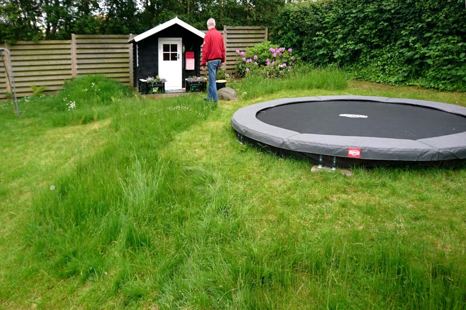 Экстремальный натурализм в саду моих соседей, Дания