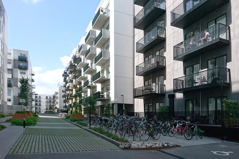 Дорога-губка для машин посреди жилищного комплекса