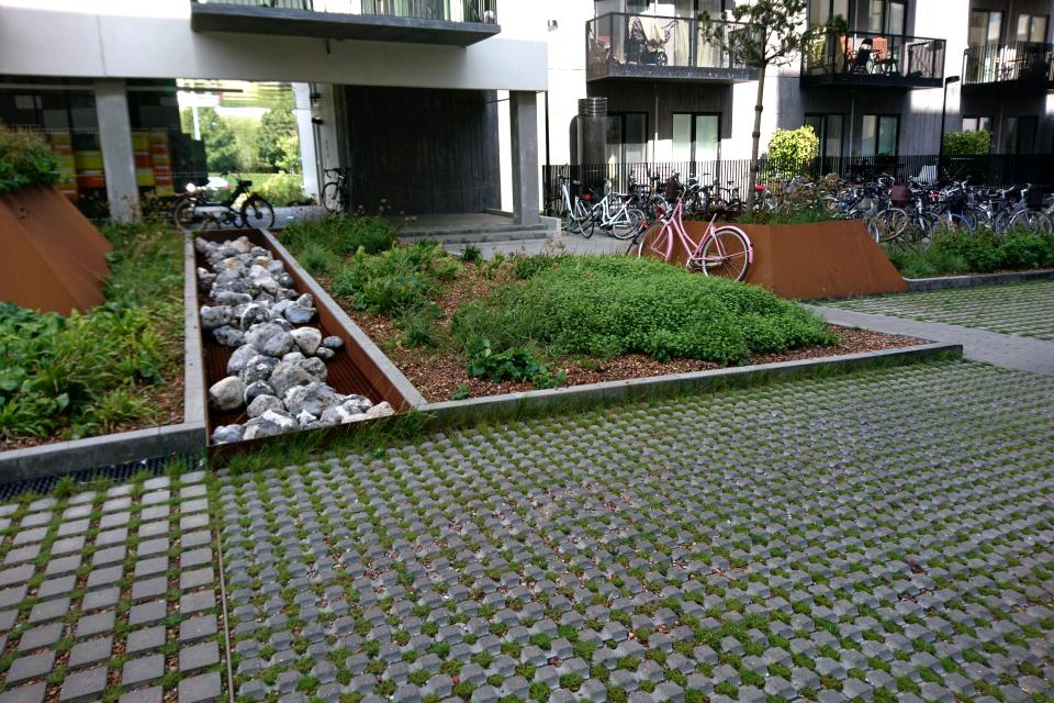 Тротуарная плитка с отверстиями для травы в жилищном комплексе.