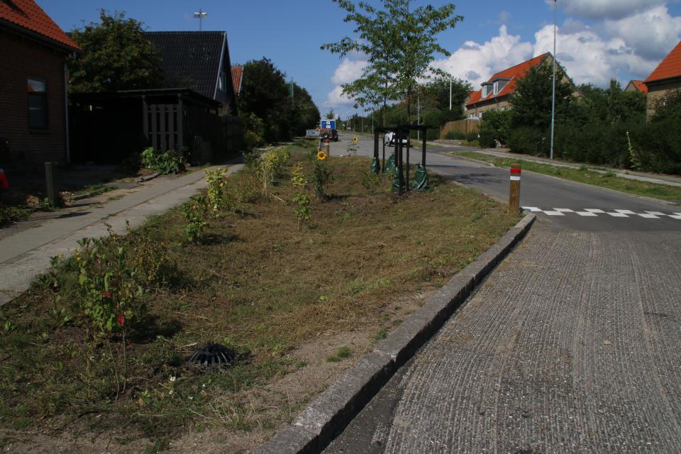 Коллектор для ливней возле тротуара. Фото 3 авг. 2019, Орхус /Aarhus N, Дания