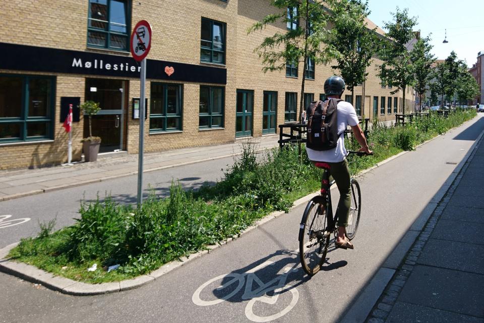 Зеленый оазис посреди дороги в центре г. Орхус / Aarhus, Дания. Фото 18 июн. 2019