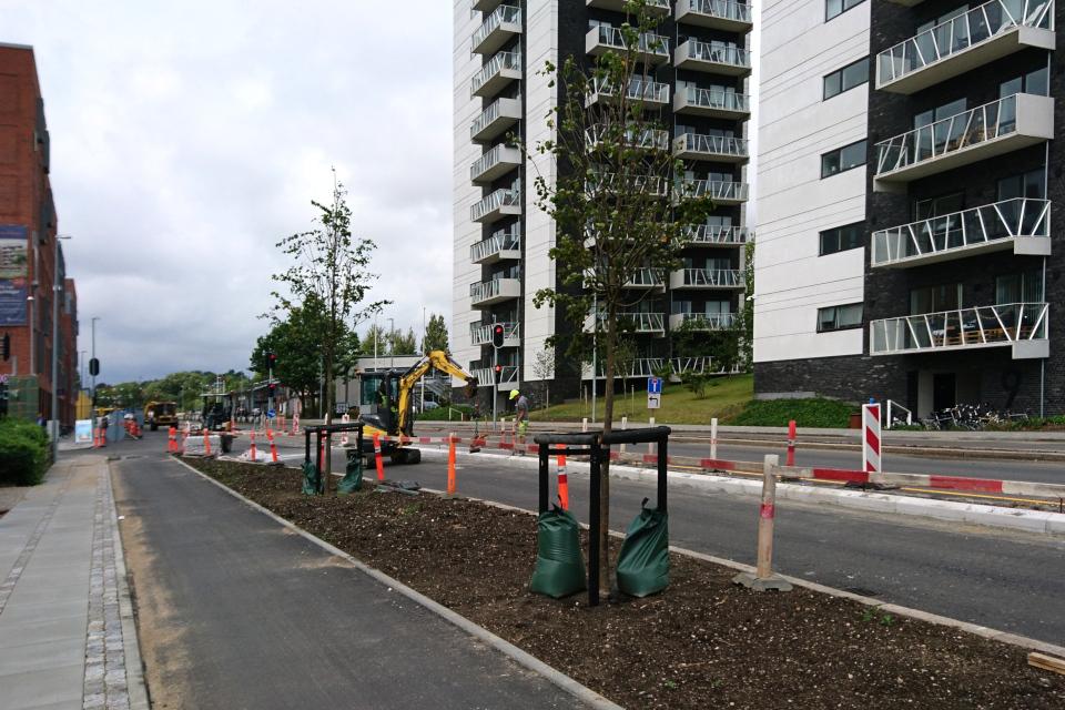 Посадки деревьев возле дороги. Фото 31 июл. 2019, г. Орхус / Aarhus, Дания