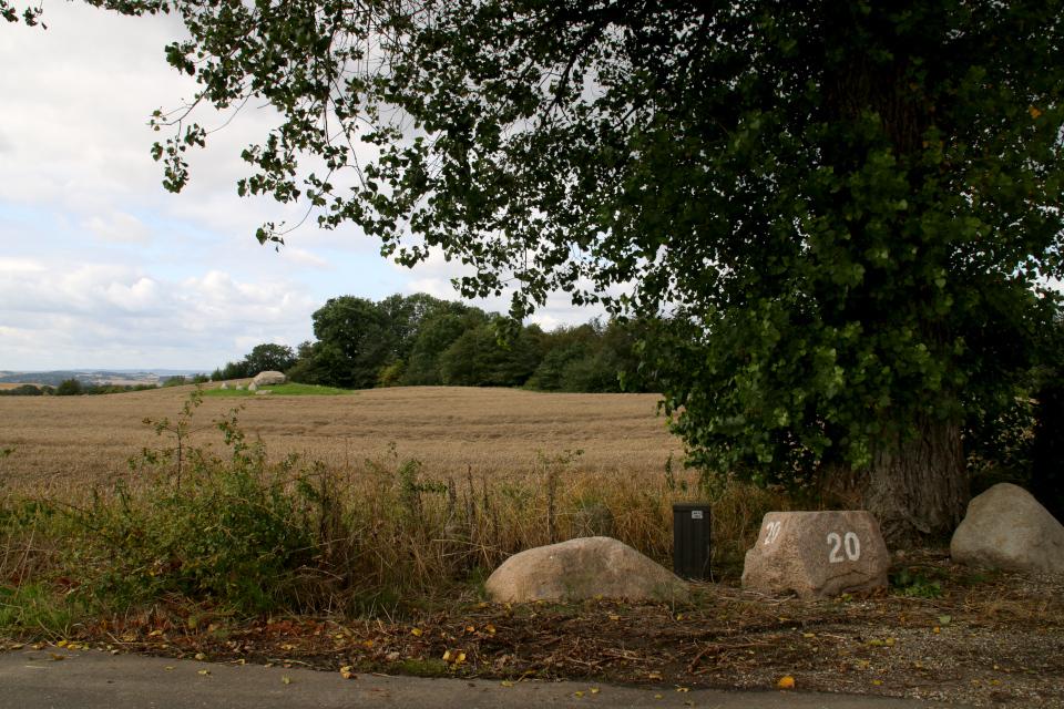 Археологический комплекс Агри или Гролегорд (Agri Dyssen/ Grovlegårddyssen)вид с дороги