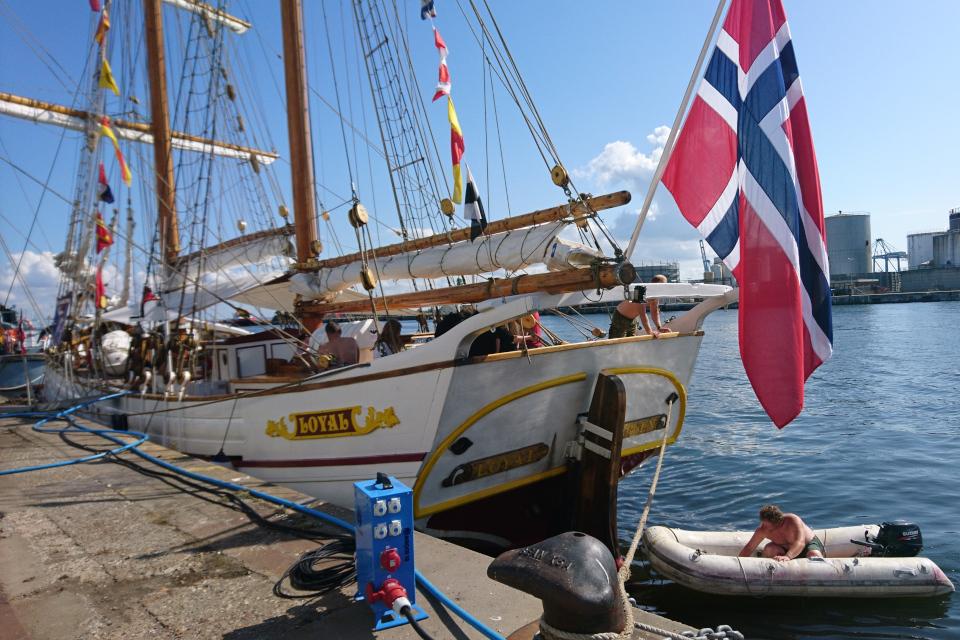 Норвежский парусник Loyal. Фото 2 авг. 2019, порт г. Орхус / Aarhus, Дания