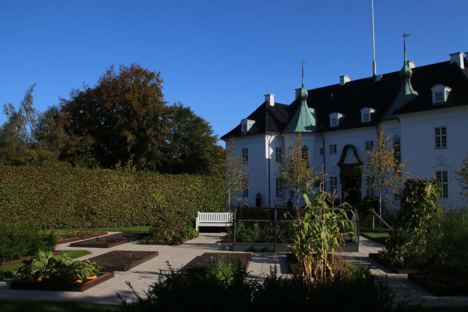 Огороды перед дворцом Марселисборг. Фото 2 июл. 2019, г. Орхус / Aarhus, Дания