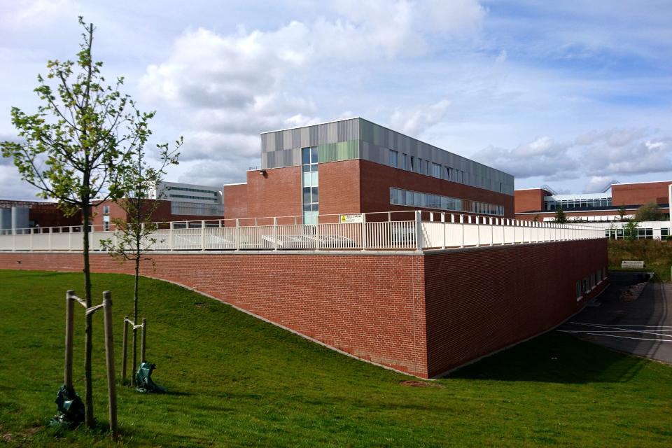 Новое здание с зеленой крышей