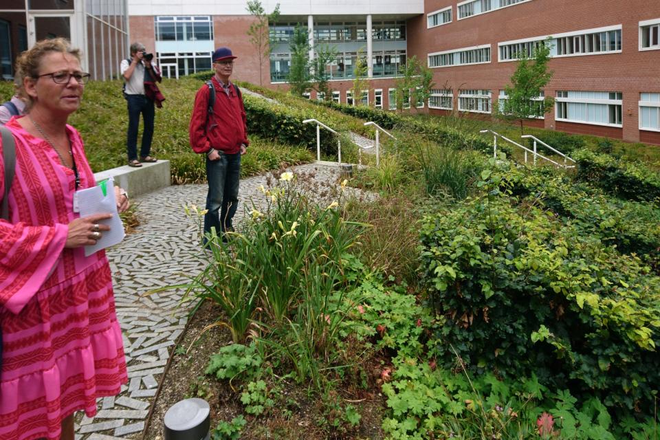 Кристине Йорт рассказывает о подборе растений для оформления сада