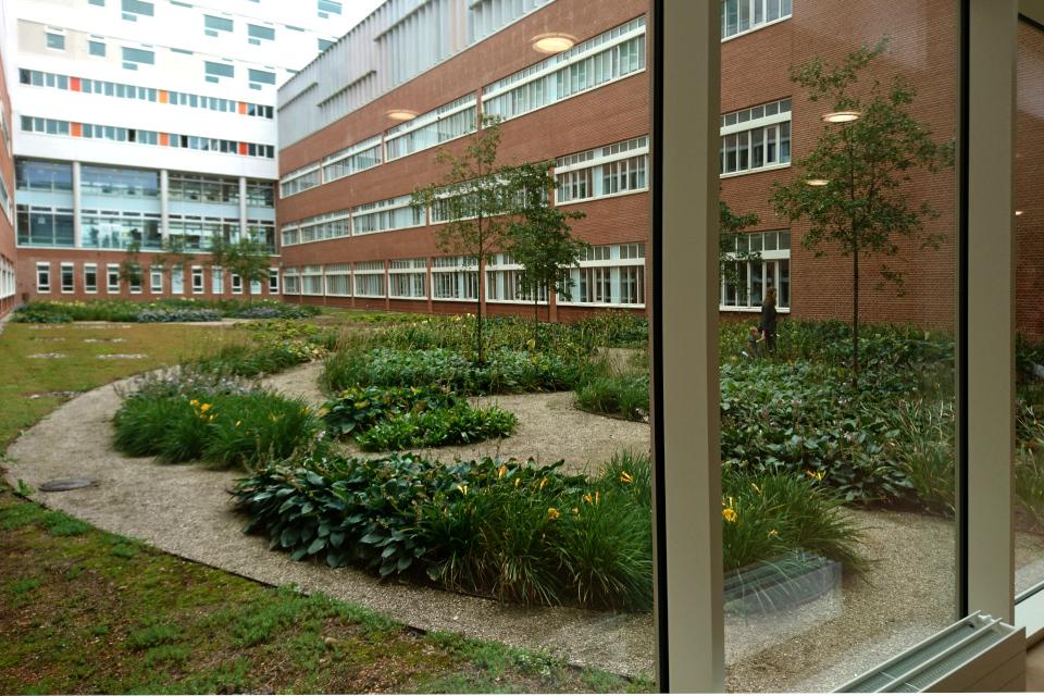 Вид на внутренний садик в 1-го этажа. Фото 1 сент. 2019, г. Орхус / Aarhus N, Дан