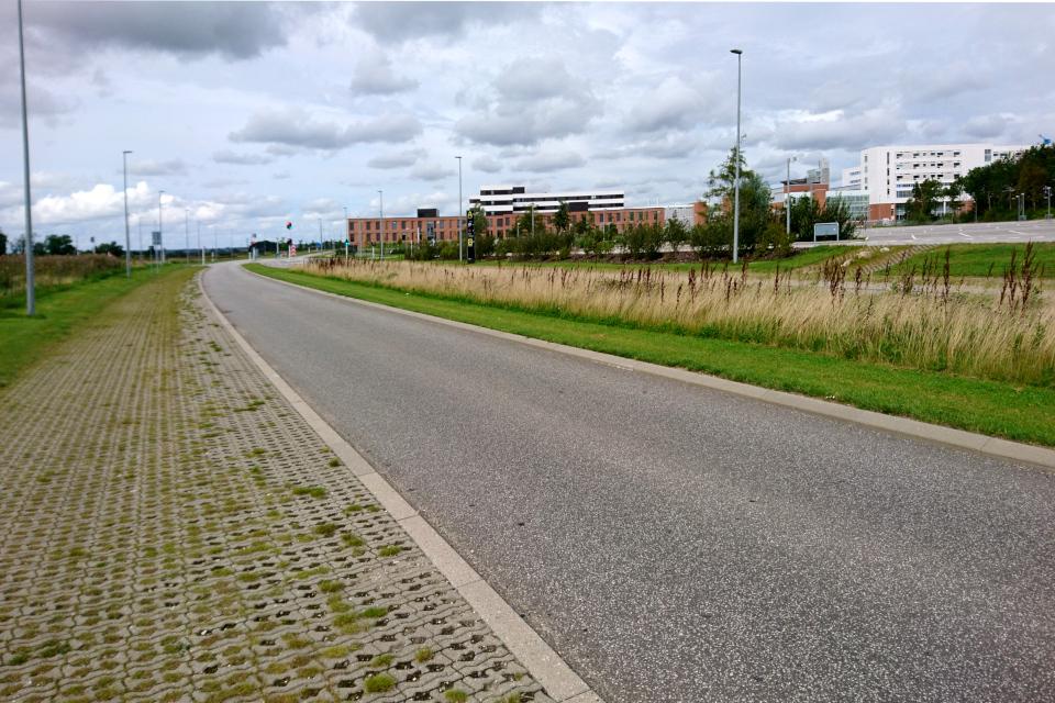 Дорога между парком и городом университетской больницы г. Орхус, Дания.