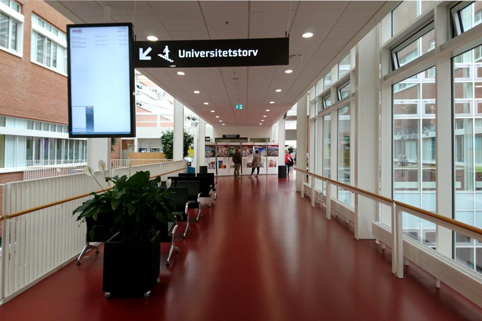 Монитор с указанием направления на Университетскую площадь (Universitetstorv)