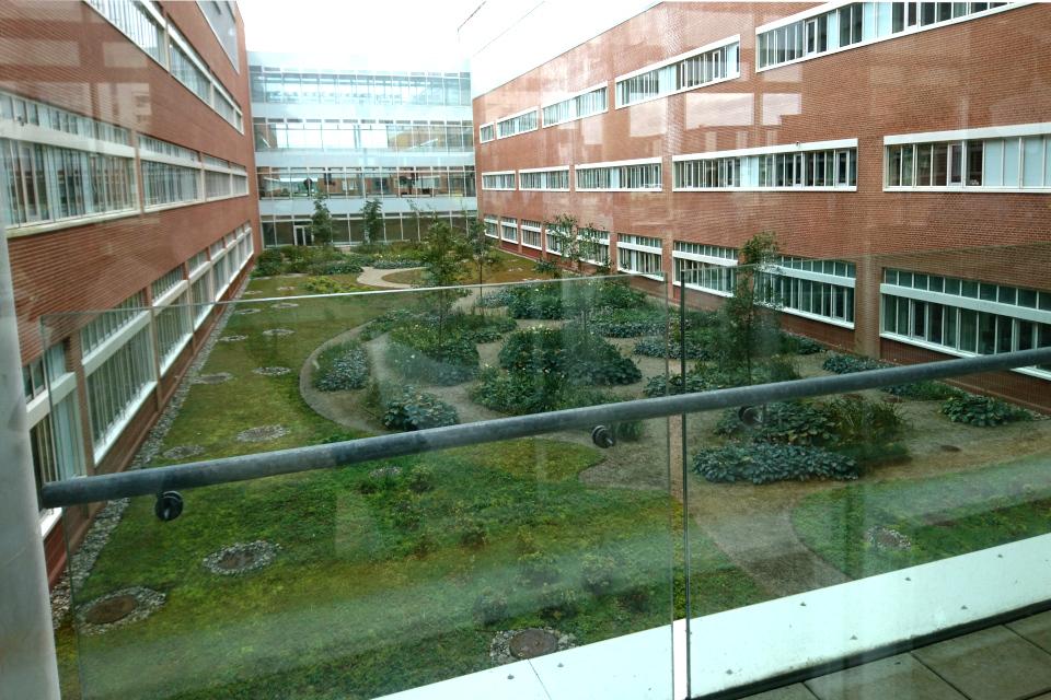 Вид на внутренний сад с балкона второго этажа, Университетская больница г. Орхуса