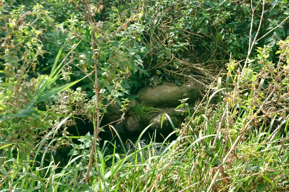 Камни для укрепления берега ручья на месте бывшей плотины