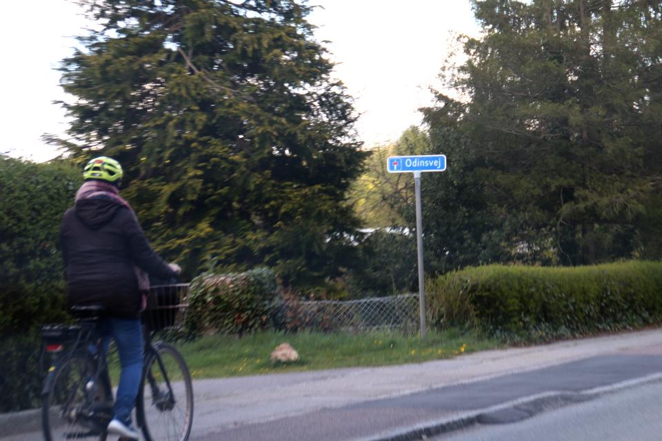 Дорожная табличка с названием улицы Odinsvej, г. Рю/  Ry, Дания