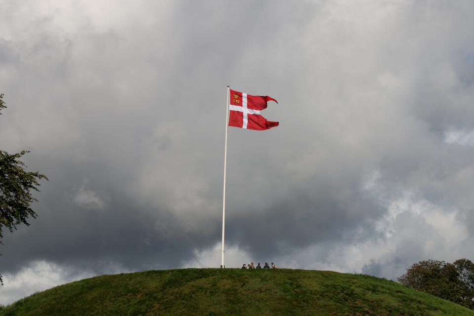 Флаг Даннеброг на северном кургане. FM, сокращение от слов Fredet Mindesmærke