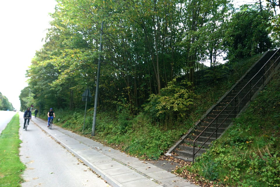 Дорога, возле которой на возвышенности находится дольмен Орслев