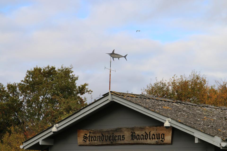 Крыша лодочного клуба Страндвай (Strandvej Baadlaug)