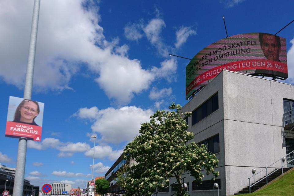 Реклама выборов в Европейский парламент и датский парламент Фолькетинг (Folketing)