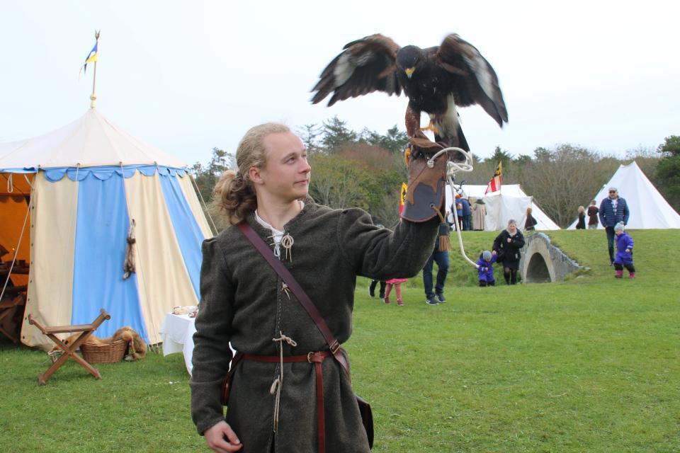 Соколиная охота. Средневековый фестиваль в монастыре Витскол