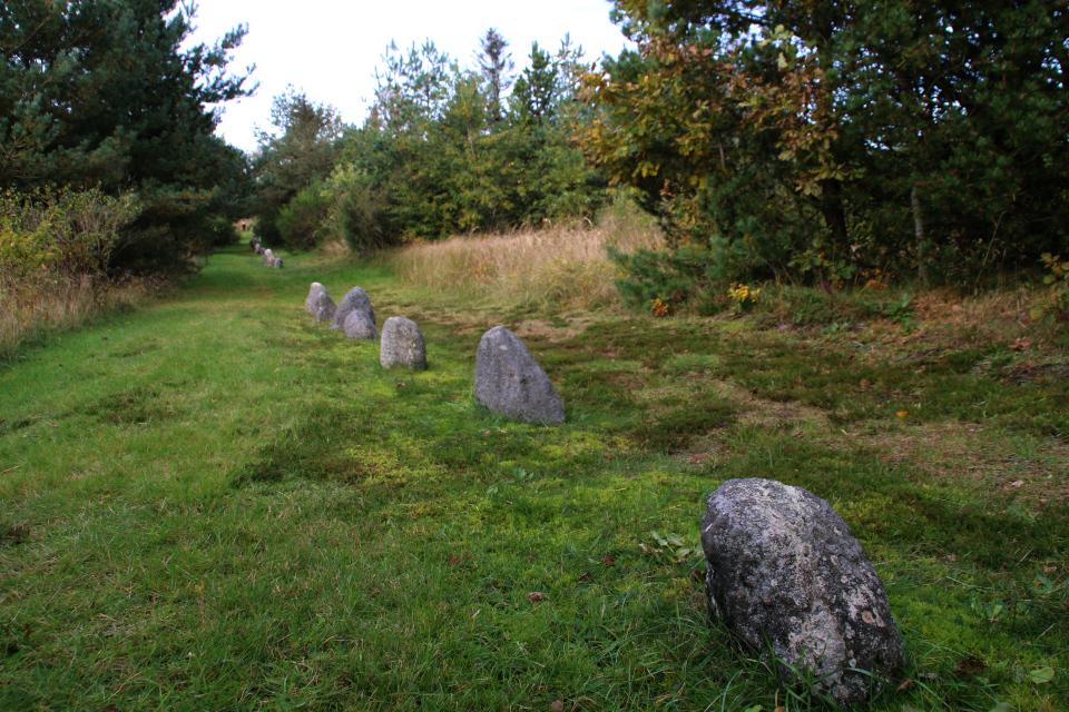 Одни из последних камней в ряду, археологический комплекс Мурхой