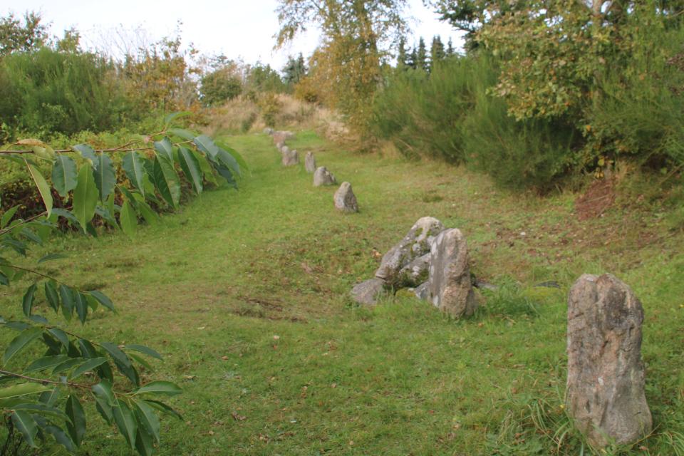 Каменный ряд, вид на курган Мурхой, Myrhøj stenrække, Дания