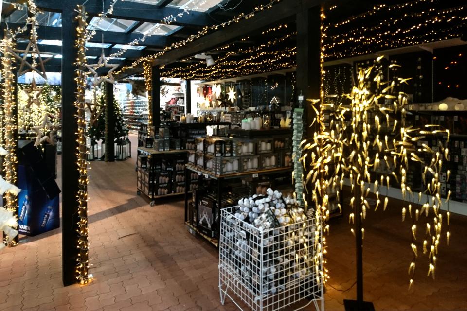 Рождественский базар в Plantorama, ива со свечками. 22 окт. 2019, Дания