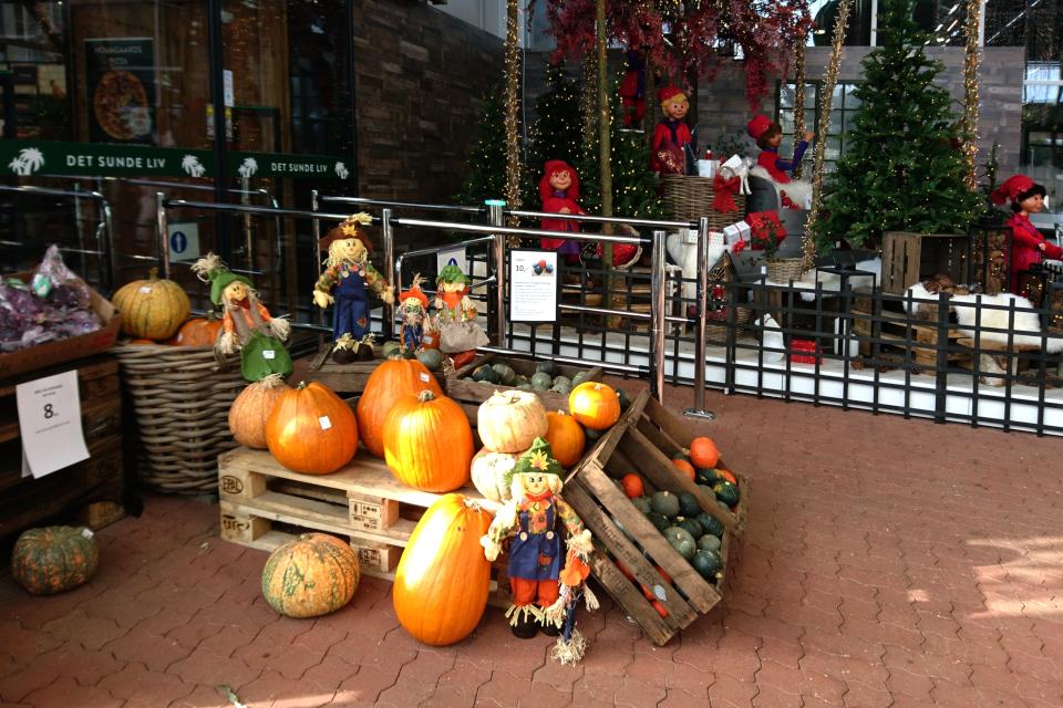 Рождественский базар в Plantorama