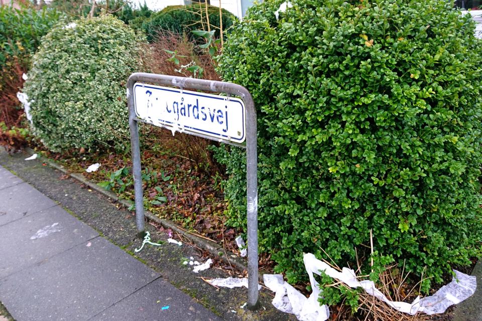 Туалетная бумага на кустах палисадника, Дания
